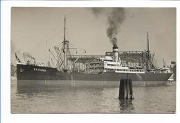 V171/ Dampfer Negada   Frachter Handelsschiff  Foto AK Ca.1925 - Handel