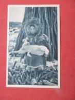 Aureole Boreale   Alaska    Ref 4177 - América