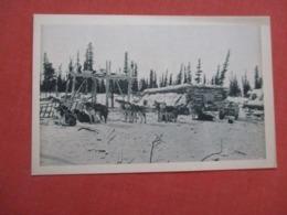 En Voyage Sur Le Cercle Arctique    Alaska    Ref 4177 - América