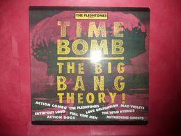 LP33 N°4950 - THE FLESHTONES PRESENT : TIME BOMB - THE BIG BANG THEORY ! - ROSE 137 - NR 340 - ROCK NEW WAVE PUNK GARAGE - Rock