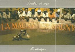 ( MARTINIQUE )( PITT CLERY ) RIVIERE PILOTE . COMBAT DE COQS - Martinique