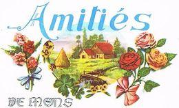31 AMITIES  DE MONS    CPM  TBE  31-29 - Frankreich