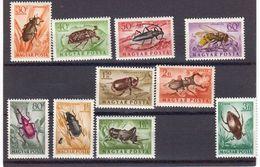 Hongrie 1954 ¨Poste Aerienne. Yvert 160 / 169 ** Neufs Sans Charniere. Serie Des Insectes. - Ungarn