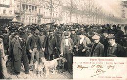 18958    TOULOUSE   LE  MARCHE AUX CHIENS  ALLEES LAFAYETTE - Toulouse