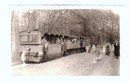 TB Et RARE Carte Photo Bien Animée Du Train / Tram Faisant Hoeilaart - Overijse En 1957 - 2 Scans - Hoeilaart