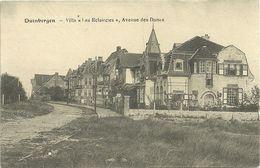 """DUINBERGEN  -  Villa """"Les Eclaircies"""" , Avenue Des Dunes - Knokke"""