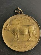 Belgique Médaille, Hainaut Concours De Canton 1910 Amélioration De La Race Bovine - Belgique