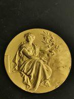 Belgique Médaille, Union Des Societes De Sténographie Et De Dactylographie De Belgique 1936 - Belgique