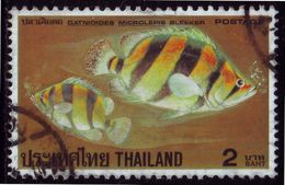 Thailand Stamp 1978 Thai Fishes (3rd Series) 2 Baht - Used - Tailandia