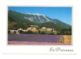 SAVOILLAN (84) - Sur La Route De Lavande, Le Mont Ventoux - France