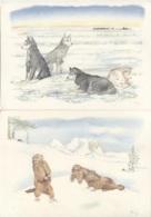 CPM - ILLUSTRATION Danny TAIRRAZ - Animaux De Montagne - Lot De 2 Cartes - Edition André - Illustrators & Photographers