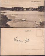 Berlin - Postkarte - Blick Auf Den Waldsee - Circa 1916 - Non Circulee - Cygnus - Allemagne