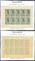 Congo Belge - Timbres Mols (Bilingue) Feuillet De 10 ** MNH : Carnet 3e Tirage Type N°64 C 5C Vert, Panneau-α D 15 - Booklets