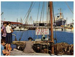(A 9) Australia - TAS - Hobart Victoria Dock With Ship & Fish - Port Arthur