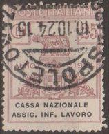 Italia 1924 Enti Semistatali UnN°19 (o) Cassa Nazionale Assic. Infortuni Sul Lavoro - Fiscaux