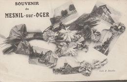 51 - LE MESNIL SUR OGER - Souvenir Du Mesnil Sur Oger - Other Municipalities