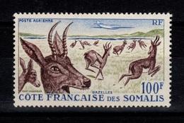 Cote Des Somalis - YV PA 26 N** Gazelles Cote 11 Euros - Französich-Somaliküste (1894-1967)