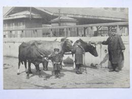 CPA 75019 - Marché Aux Vaches Laitières - Elèves Bouviers - Abattoir De La Villette - Arrondissement: 19