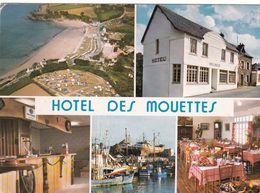 29-DOUARNENEZ-HOTEL DES MOUETTES-MULTIVUES-ANIMEE- CPSM - Douarnenez
