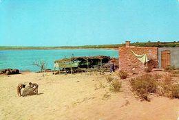 FORMENTERA : Playa De Mitjorn - Formentera