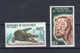Haute Volta. Poste Aérienne. Caiman Sacré De Sabou Et Lion - Obervolta (1958-1984)