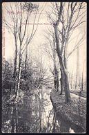 ESCH ALZETTE - DIE ALZETTE IM PARK METZ ET CO 1907 - Esch-sur-Alzette