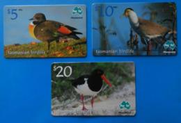 Australia X3 Bird Oiseaux Vogel Pajaro Uccello Duck Birds Tazmania Paytel - Altri