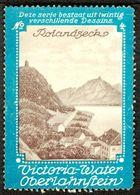 """Oberlahnstein Lahnstein 1913 """" Victoria Wasser Bild Rolandseck """" Vignette Cinderella Reklamemarke - Erinofilia"""