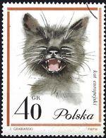 Poland 1964 - Mi 1476 - YT 1333 ( Domestic Cat ) - 1944-.... République