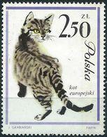 Poland 1964 - Mi 1482 - YT 1339 ( Domestic Cat ) MNG - 1944-.... République