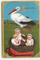 N°15455 - Carte Gaufrée - Congratulations - Cigogne Dans Un Nid Avec Des Bébés - Bébés