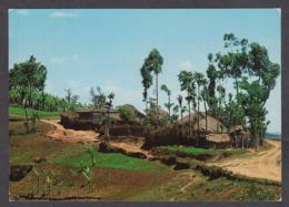 114643/ MUBUGA, *Enclos*, Habitation Typique - Rwanda