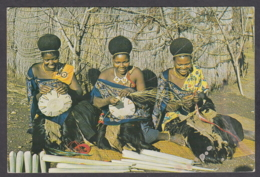 114659/ SWAZILAND, Women Making Sisal Baskets - Swasiland