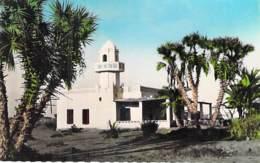 Afrique Noire - DJIBOUTI : Mosquée D'Ambouli ( Mosque ) - CPSM Dentelée Colorisée Format CPA  - Black Africa - Djibouti