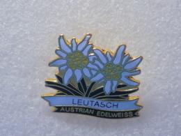 PINS LOT8                          1150 - Badges
