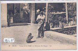 BLIDA- GORGES DE LA CHIFFA AU RUISSEAU DES SINGES - Blida