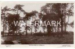 BAGILLT WOODLANDS OLD RP POSTCARD FLINTSHIRE WALES - Flintshire
