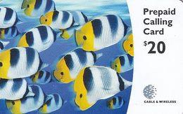 BERMUDA ISL. - Fish, C & W Prepaid Card $20, Used - Bermude