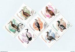 Roumanie Lot De 18 Timbres Les Oiseaux - Colecciones & Series