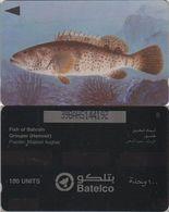21/ Bahrain; P66. Grouper, 39BAHS, Pointed CN - Bahrein