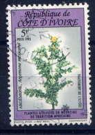 COTE D'IVOIRE - 904° - ARGEMONE MEXICANA - Costa De Marfil (1960-...)