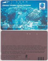 91/ Indonesia; Underwater Life - Indonésie