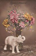 Bonne Annee New Year! Elephant Trinket Toy, Flowers Vase 1913 - Souvenir De...