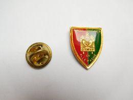 Superbe Pin's , Armée Militaire , Forces Françaises En Allemagne , DTMVF , DIRECTION DES TRANSPORTS MILITAIRES PAR VOIE - Militaria