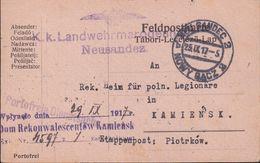 POLAND Austria Fieldpost 1917 Postcard Polish Legion - Pologne