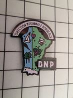 115d Pin's Pins / Rare Et De Belle Qualité !!! THEME BANQUES / BNP La Banque Aux Amendes Record ! DIRECTION REGIONALE BO - Banques