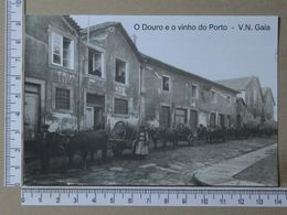 PORTUGAL - O DOURO E O VINHO DO PORTO -  VILA NOVA DE GAIA -   2 SCANS     - (Nº36504) - Porto