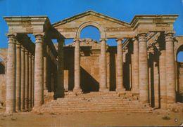 Iraq - Postcard  Unused -  Al-Hatra ,Nainwa - Iraq