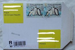 Cover Brief  Lettre Recommandé 2009  Pour La France Timbre  Manchots Pingouins - Czech Republic