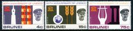 Brunei 1966 20th Anniversary Of UNESCO Set MNH (SG 144-146) - Brunei (...-1984)